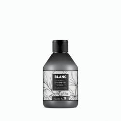 Shampooing volumisant (300 ml)